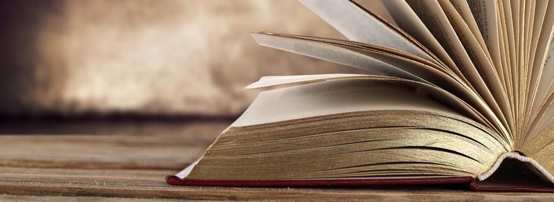 EM-Literatur