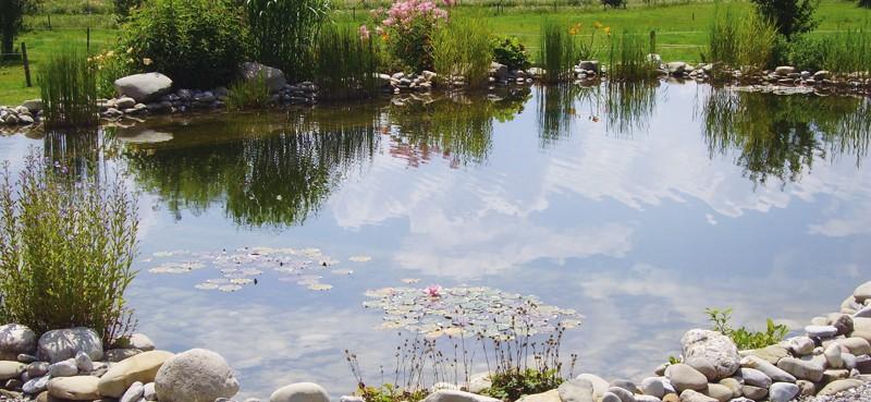"""""""In Stiller Tiefe ruht der Teich…"""""""