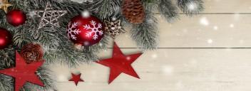 Frohe Weihnachten und ein Gutes neues Jahr...