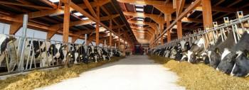EM in der Landwirtschaft